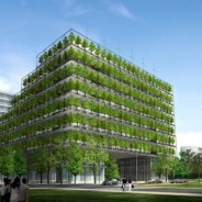 Green architecture: how low can a low-carbon building go?