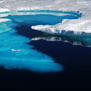 FEATURE: Climate change and the world's oceans